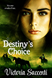 Destiny's Choice (Destiny's Series Book 2)