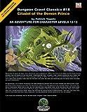 Dungeon Crawl Classics #18: Citadel of the Demon Prince