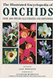 The Illustrated Encyclopedia of Orchids, , 0881922676