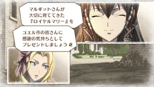 Valkyria Chronicles III: Unrecorded Chronicles (Extra Edition) [Japan Import] by Sega (Image #5)