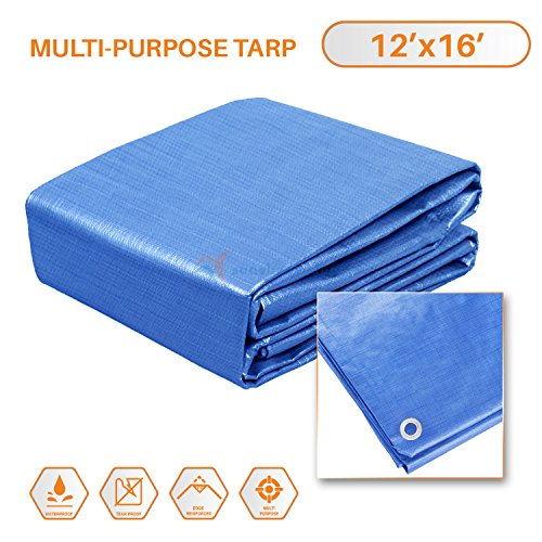 Sunshades Depot 12 x 16 Feet General Multi-Purpose 5 Mil Waterproof Blue Poly Tarp