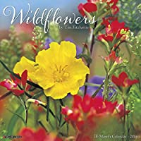 Wildflowers 2016 Calendar