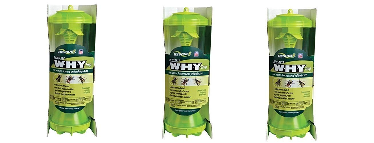 RESCUE Non-Toxic Reusable Trap for Wasps, Hornets and Yellowjackets (Pack of 3 by RESCUE