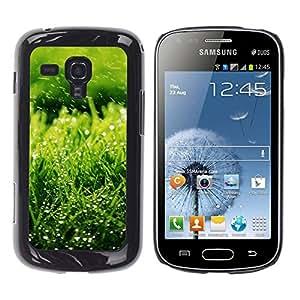 Exotic-Star ( Nature Green Grass ) Fundas Cover Cubre Hard Case Cover para Samsung Galaxy S Duos / S7562