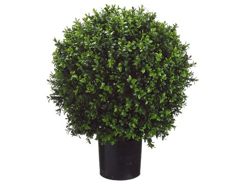 Set of 2 - Pre-Potted 24'' High Ball Shaped Boxwood Topiary- 16'' Diameter - Plastic Pot by Arcadia Silk Plantation