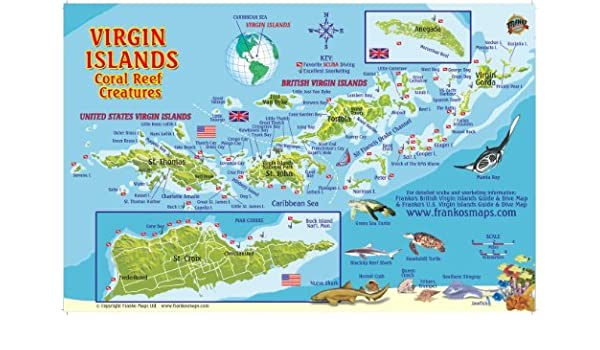 By Franko Maps Ltd. Virgin Islands Map & Coral Reef Creatures Guide ...