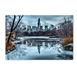 Trademark Fine Art Frozen Central Park Lake I by David Ayash Wall Decor, 16 by 24-Inch