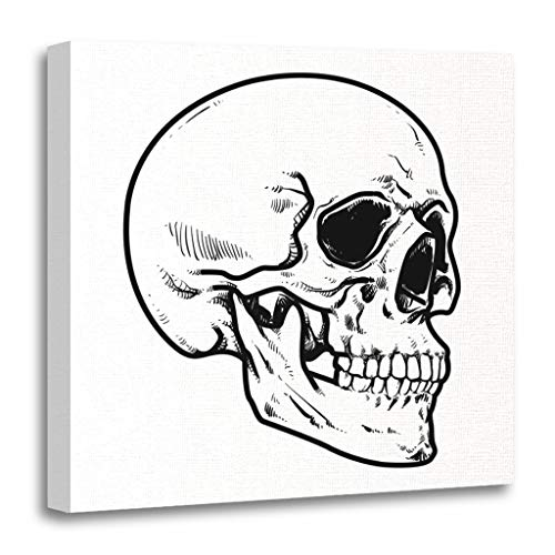 Emvency Painting Canvas Print Wooden Frame Artwork Line Skull Collection of Hard Core Anatomic Anatomy Decorative 20x20 Inches Wall Art for Home Decor ()