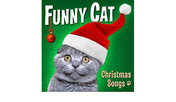 Amazon.com: Funny Cat: Christmas Songs: Funny Cats: MP3 Downloads