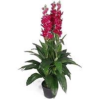 Leaf Planta de orquídea Artificial de 100 cm