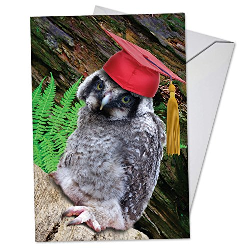 (Capped Creatures - Owl: Graduation Card Featuring a Wise Owl Wearing a Red Graduation Cap, with Envelope.)