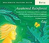 Awakened Rainforest