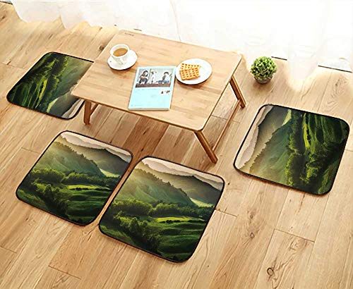 (Jiahonghome Universal Chair Cushions Beautifully Illuminated Landscape of Tuscany Personalized Durable W15.5 x L15.5/4PCS)