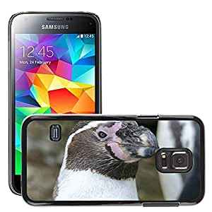 Super Stella Slim PC Hard Case Cover Skin Armor Shell Protection // M00144395 Humboldt Penguin Penguin Animal Cute // Samsung Galaxy S5 MINI SM-G800