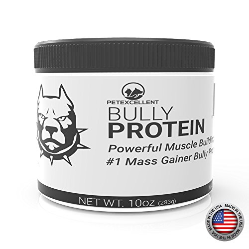 PetExcellent Bully Protein Muscle for Canine Dog Weight Gainer (Beef)