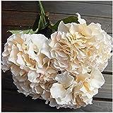 FRE - Mazzo di ortensie finte in seta artificiale, 5 fiori, per decorazione di matrimoni, colore: champagne