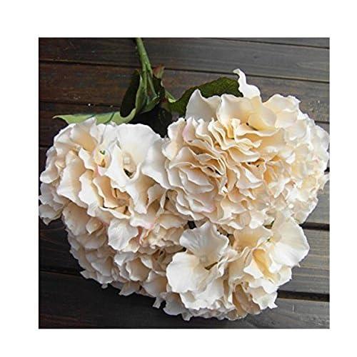Hydrangea artificial flowers amazon fre 5 head artificial silk hydrangea flowers wedding decor bouquet champagne mightylinksfo