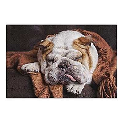 English Bulldog Sleeping on Couch Photography A-90753 (Premium 1000 Piece Jigsaw Puzzle for Adults, 20x30, Made in USA!): Toys & Games