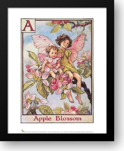 Apple Blossom Fairy 15x18 Framed Art Print by Barker, Cicely Mary