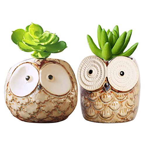 GeLive Succulent Planter Owl Pot Plant Container Decorative Window Box Pen Holder 2 Pack