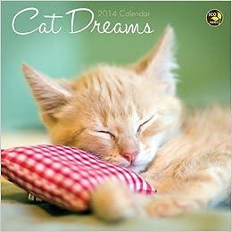 2014 Cat Dreams Mini Calendar