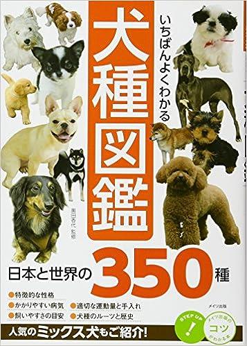 犬 の 種類