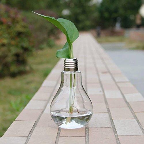 gmakerr bombilla forma soporte botella de flor de cristal florero hidropónicos recipiente: Amazon.es: Jardín