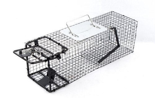 ALEKO Animal Trap 16x5x5 Inches for Squirrels, Rabbits, Chipmunks and Rats (Rabbits Wild Trap)