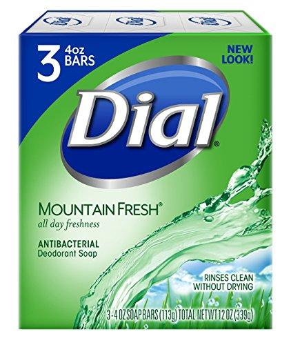 dial antibacterial soap aloe - 9