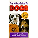 Video Guide to Dogs