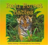 Rain Forest Babies, Kathy Darling, 0802784119
