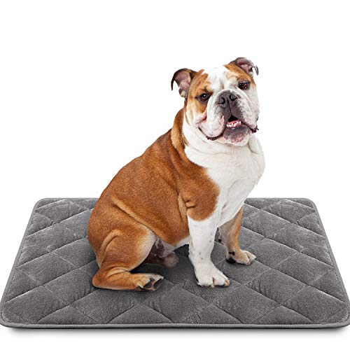 """LOCHAS Luxury Flannel Dog Mat Pet Bed 24""""x36"""", Soft Crate Pad Mats for Dogs & Cat, Washable Absorbent Puppy Furniture Protection Pads with Diatomaceous Bead, Grey"""