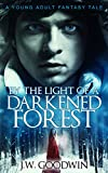 By The Light Of A Darkened Forest