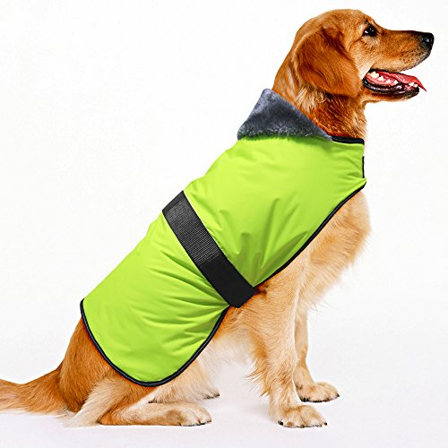 BSEEN Waterproof Dog Winter Coat, Soft Fleece Lined Reflective Dog Jacket for Winter, Outdoor Sports Pet Vest Snowsuit Apparel, S-XXXL (M, Green-Thick) Review
