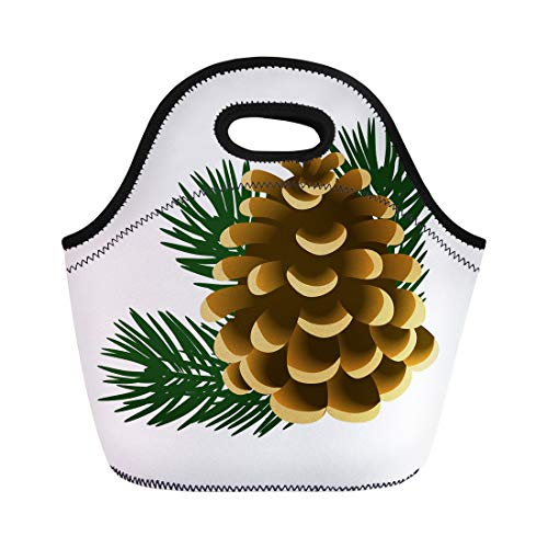 Semtomn Neoprene Lunch Tote Bag Brown Single Pinecone and Twigs of Pine Tree the Reusable Cooler Bags Insulated Thermal Picnic Handbag for Travel,School,Outdoors, Work