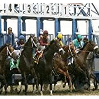 The Never Lose Horse racing System