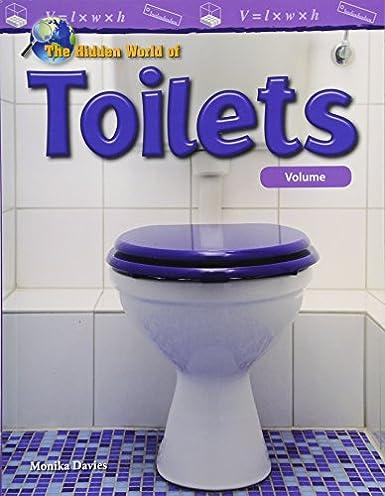 The Hidden World of Toilets: Volume (Mathematics Readers)