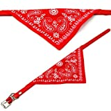 Cute Personalized Pet Dog Bandana Collar in Red