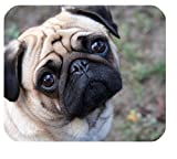 Pug Dog New Custom Rectangle Non-Slip Rubber Mousepad Gaming Mouse Pad SunshineMP-355