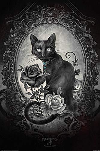 Pyramid America Alchemy Paracelcus Gothic Cat Art Print Poster 24x36 Inch