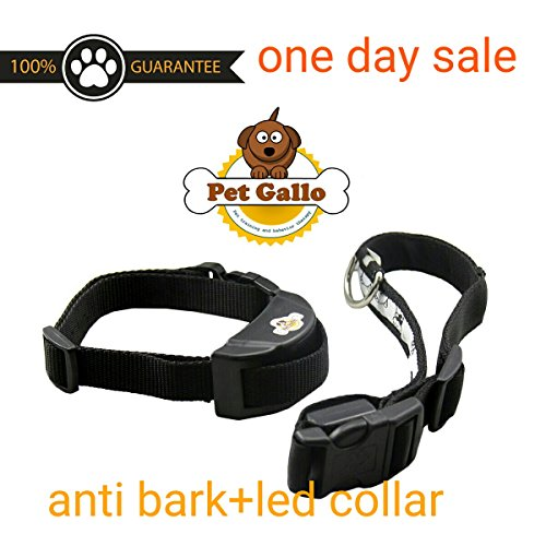 ONE DAY SALE' Dog No Bark Collar, by pet gallo, Electric Anti Bark No Harm Shock Control with 7 adjustable levels. safe for 12 to120 pound dogs, Free Bonus led collar + eBook