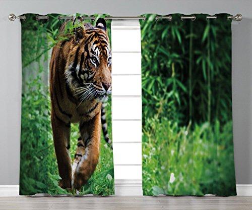 (Satin Grommet Window Curtains,Tiger,Siberian Large Feline at Zoo Wildlife at Captivity Unnatural Habitat Agressive Animal,Multicolor,2 Panel Set Window Drapes,for Living Room Bedroom Kitchen Cafe)