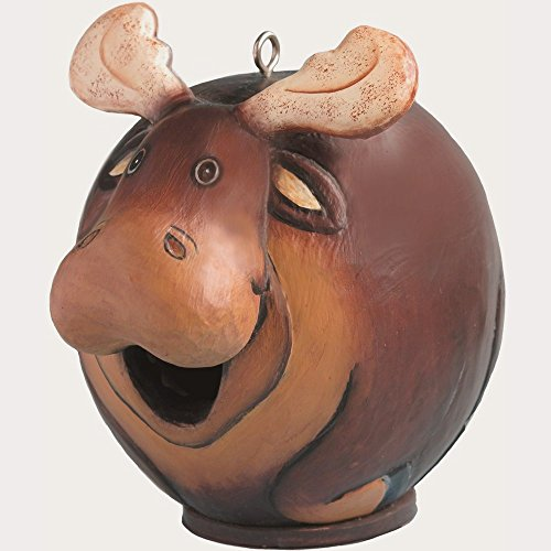 Songbird Essentials SE3880089 Moose Gord-O Birdhouse (Set of 1)