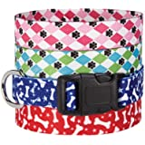 Casual Canine Nylon Pooch Pattern Dog Collar, 18 to 26-Inch, Blue Argyle
