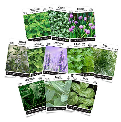 Sow Right Seeds - Herb Garden Seed Collection - Arugula, Basil, Chives, Cilantro, Cress, Dill, Lavender, Oregano, Parsley, Sage & Thyme; Non GMO Heirloom Seeds with Full Instructions for Planting ()