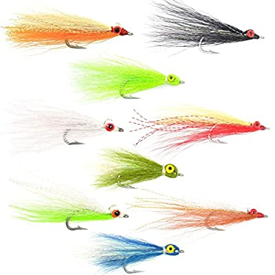 The Fly Fishing Place Clousers Minnow Fly Fishing Flies Assortment - Collection of 9 Saltwater and Bass Flies - Hook Size 1/0
