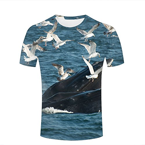 cao xiao ying Mens T-Shirts 3D Printed Graphic Seagulls and Whale Frolic Short Sleeve Shirt Crew Neck Casual Couple Top Tees XXL ()