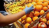 BioSafe Disposable Medium Safety Gloves