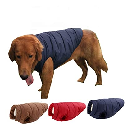 Doudoune sans manches pour chien Doudoune sans manches pour chien