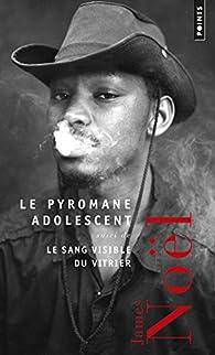 Le Pyromane adolescent : Suivi de Le Sang du vitrier par James Noël
